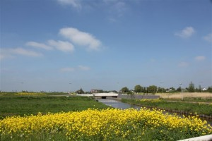 Alle foto's in dit weekverslag gaan over de Klapwijkse Knoop