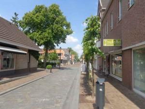 Bruisend Bleiswijk