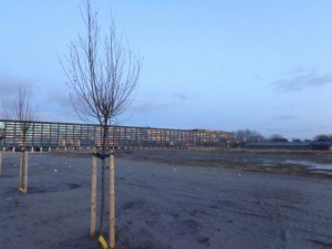 Gemeentehuis vanaf Wilderszijde