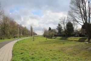 Offenbachplantsoen nog zonder vlinders & bijtjes