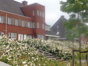 Parkzoom Bergschenhoek