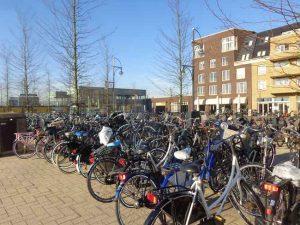 Volle onbewaakte fietsenrekken bij station Westpolder